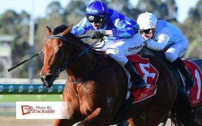 Sacca the 18th Winner for Capitalist