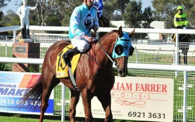 Wagga trainer Chris Heywood wins the Parkes Cup with Class Clown