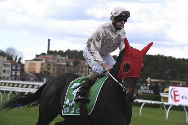 The price is right for Blitzar at Randwick
