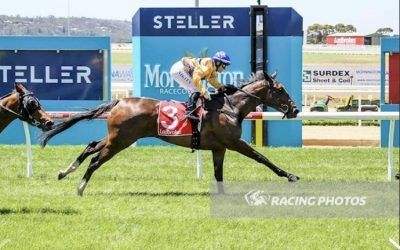 Black Bliss breaks maiden in style