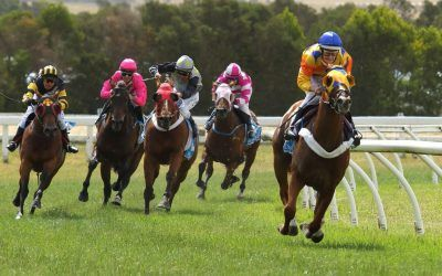 Nankervis brings in the new year with a 11 length victory!