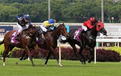 Big-race jockey Purton to ride Lim's Cruiser