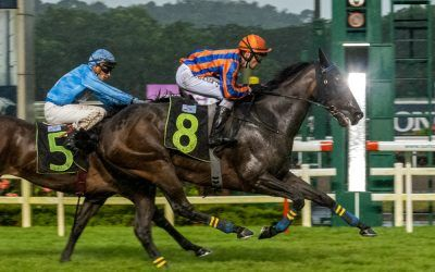 Gray's faith in Sky Rocket repaid