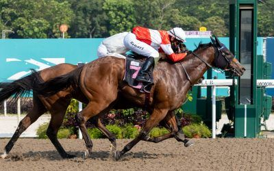 Bounty hunts down leading pick for upset win