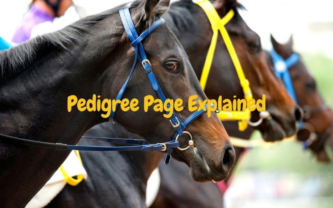 Pedigree Explained