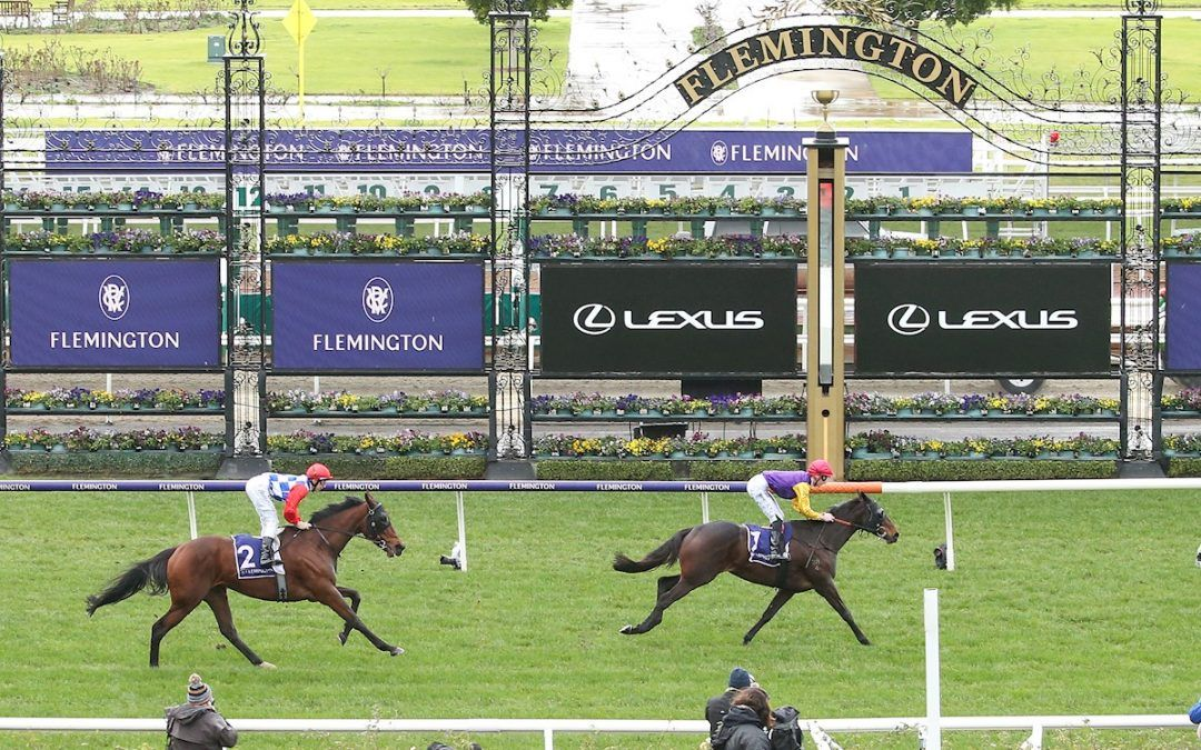 Jinda retired and sent to stud at Coolmore