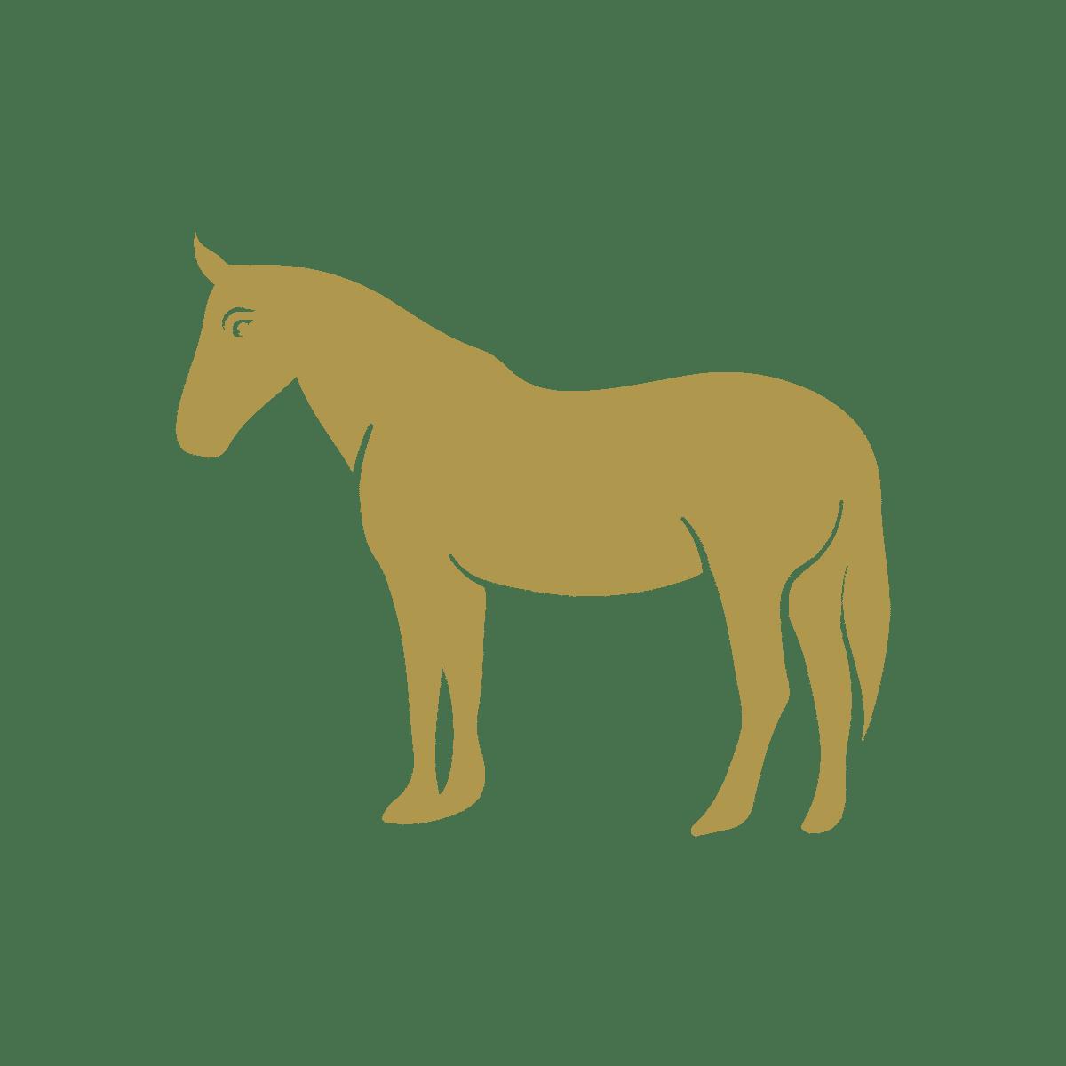 noun Horse 2166281