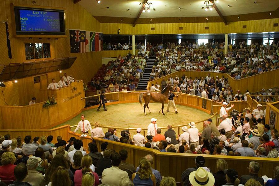 Mr Quickie relative headlines eight quality Karaka purchases