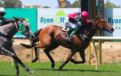 Homebred Reggae Roc's his rivals