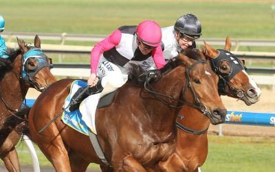 Hay Zee doubles up on Synthetic success
