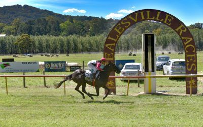 Molly makes her mark at Healesville