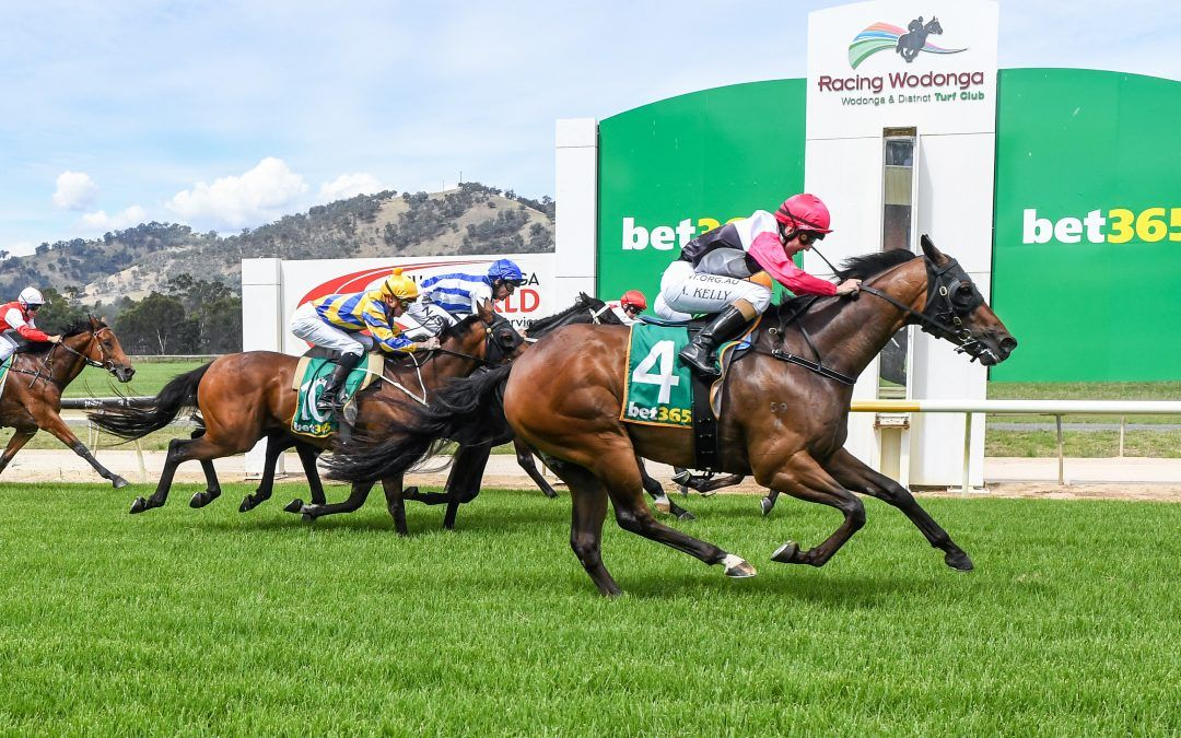Roddandtodd's prayers answered at Wodonga
