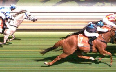 Skillful Steps Wins The Penola Cup