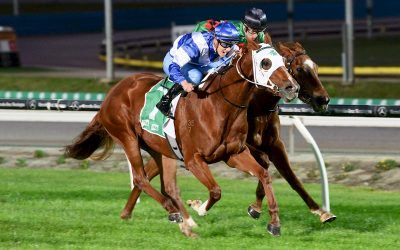 The Laming Yard Continues To Chalk Up Winners Through More Difficult Times For Our State