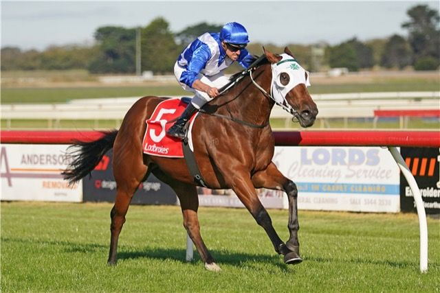 The Laming Yard Continues To Dish Out Winners Through Tough Times